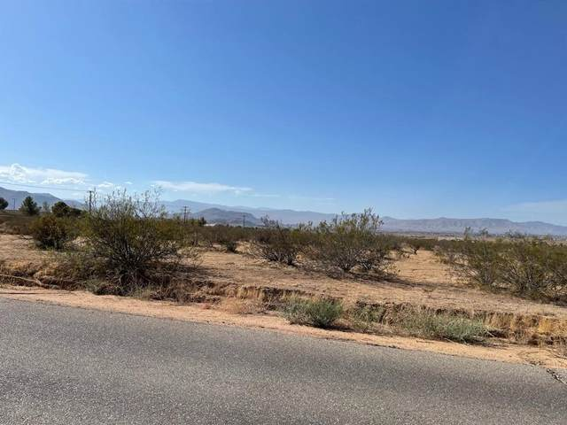 0 South Road, Apple Valley, CA 92307 (#539377) :: Realty ONE Group Empire