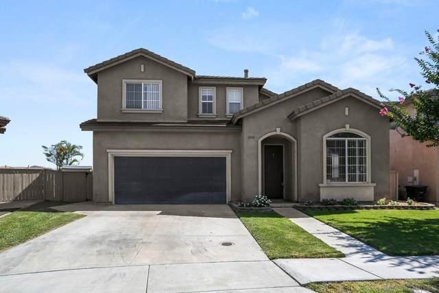 1408 Pearson Springs Ct, Chula Vista, CA 91913 (#210026625) :: Steele Canyon Realty