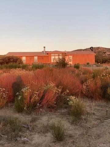 33830 Las Montanas Court, Campo, CA 91906 (#NDP2110888) :: Jett Real Estate Group