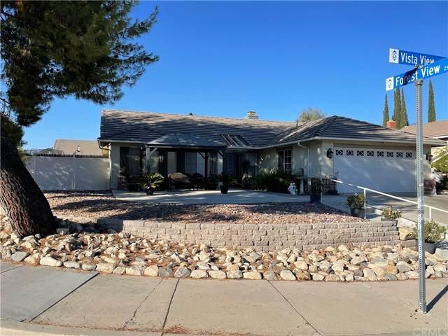 15035 Vista View, Lake Elsinore, CA 92530 (#SW21198458) :: Jett Real Estate Group