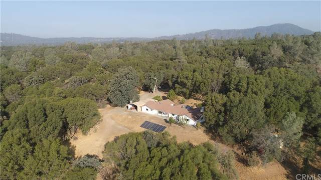 3797 Brodiea Lane, Mariposa, CA 95338 (#MP21197648) :: Team Forss Realty Group