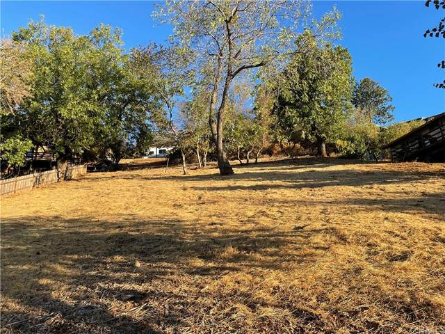 2964 Riviera Heights Drive, Kelseyville, CA 95451 (#LC21207677) :: Jett Real Estate Group