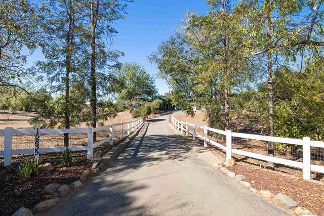 15835 Mactan Lane, Valley Center, CA 92082 (#210026777) :: Frank Kenny Real Estate Team