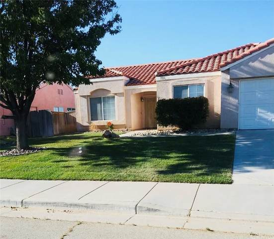 3318 Sundance Avenue, Rosamond, CA 93560 (#RS21208811) :: Corcoran Global Living