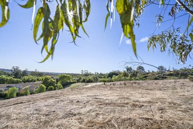 16256 Via Del Alba, Rancho Santa Fe, CA 92067 (#NDP2110967) :: Randy Horowitz & Associates