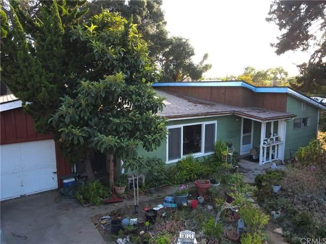 1169 Ash Street, Arroyo Grande, CA 93420 (#SC21208137) :: Corcoran Global Living