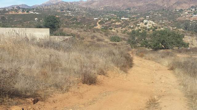 0 Bee Canyon Rd, Jamul, CA 91935 (#PTP2106700) :: Jett Real Estate Group