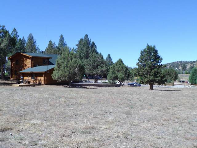 1175 Monte Vista Drive, Big Bear, CA 92314 (#219067928PS) :: Compass