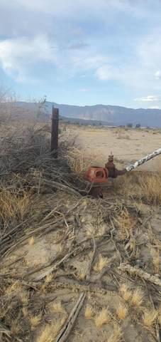 0 Borrego Valley Rd, Borrego Springs, CA 92004 (#219067936DA) :: Cochren Realty Team | KW the Lakes