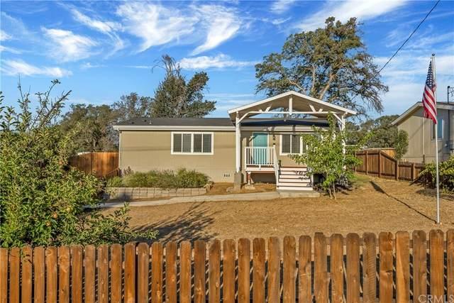 9549 Copsey Creek Way, Lower Lake, CA 95457 (#LC21209626) :: Compass