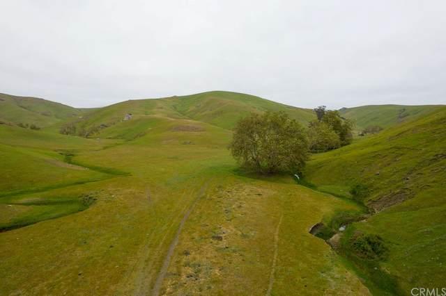 0 Harmony Valley Road, Harmony, CA 93435 (#SC21208303) :: Cochren Realty Team | KW the Lakes