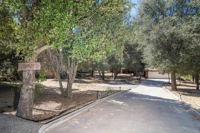 28925 Deer Creek Trl, Pine Valley, CA 91962 (#PTP2106708) :: Steele Canyon Realty