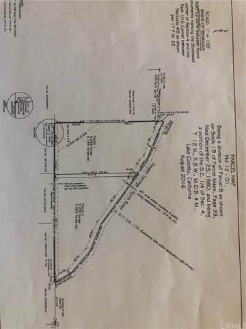 8821 Seigler Springs North Road, Kelseyville, CA 95451 (#LC21207006) :: Jett Real Estate Group
