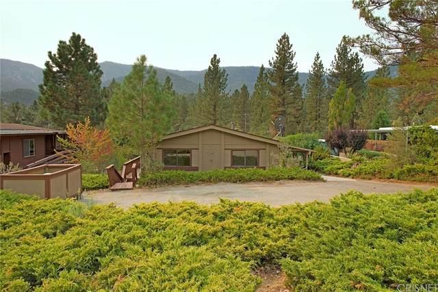 16712 Aleutian Drive, Pine Mountain Club, CA 93222 (#SR21210270) :: Jett Real Estate Group