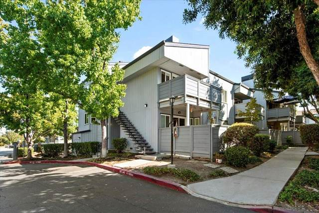 4785 Pine Forest Lane, San Jose, CA 95118 (#ML81864007) :: Twiss Realty