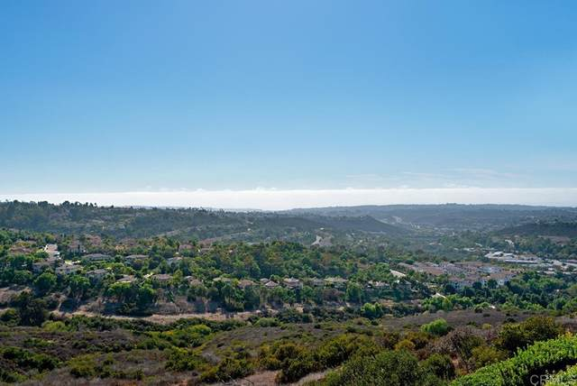 2185 Coast Avenue, San Marcos, CA 92078 (#NDP2111077) :: Corcoran Global Living