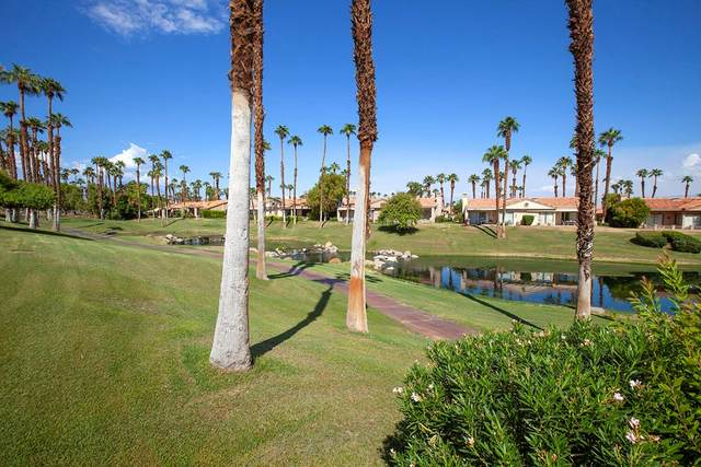 76564 Begonia Lane, Palm Desert, CA 92211 (#219068063DA) :: Zutila, Inc.