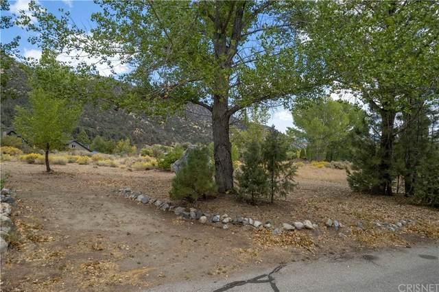2624 Beechwood, Pine Mountain Club, CA 93222 (#SR21213292) :: Necol Realty Group