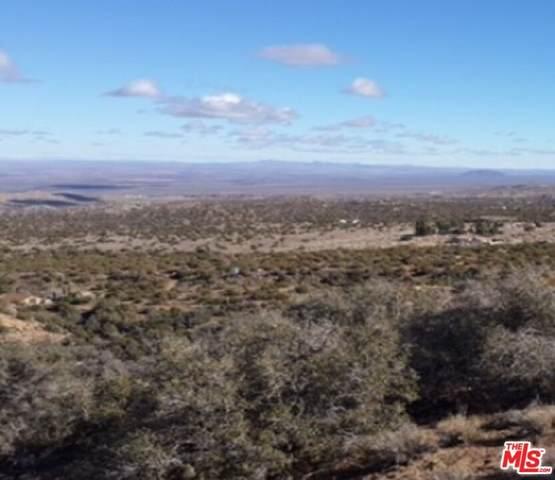 0 Vac/Vic 113 Ste/Camel Ba Road, Juniper Hills, CA 93543 (#21786068) :: Steele Canyon Realty