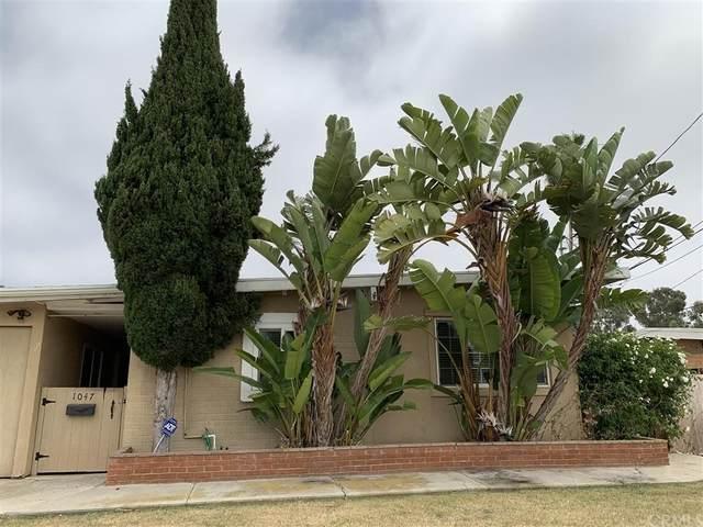 1047 Guatay Ave, Chula Vista, CA 91911 (#IV21214417) :: Zember Realty Group