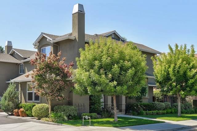 206 Shelley Avenue, Campbell, CA 95008 (#ML81864275) :: The DeBonis Team