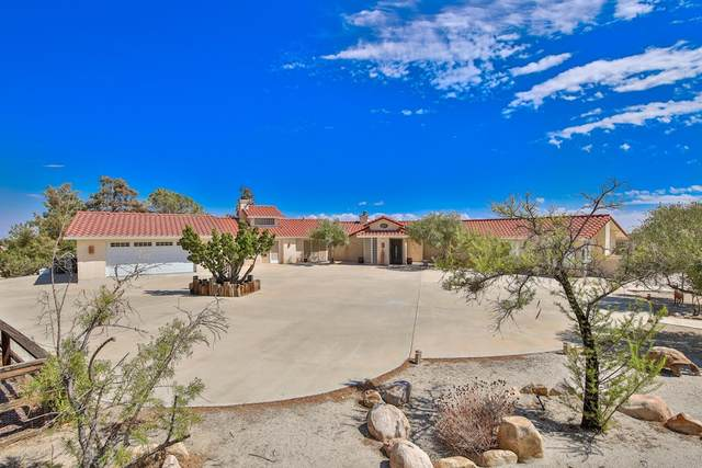 5453 Wallaby Street, Yucca Valley, CA 92284 (#219068132DA) :: Zember Realty Group
