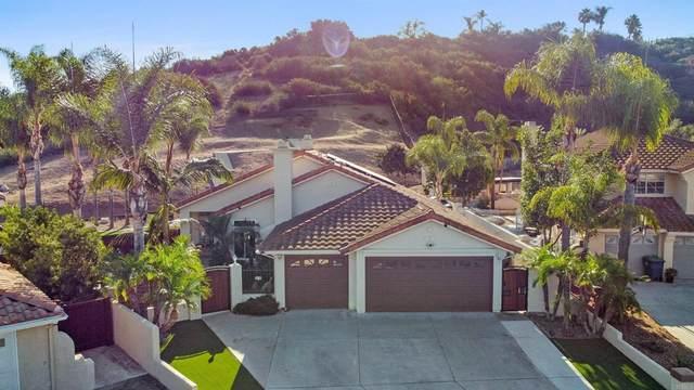 4014 Martin Canyon Court, Bonita, CA 91902 (#PTP2106821) :: Necol Realty Group
