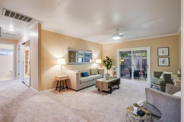 1056 Wallace Drive, San Jose, CA 95120 (#ML81864240) :: Bathurst Coastal Properties
