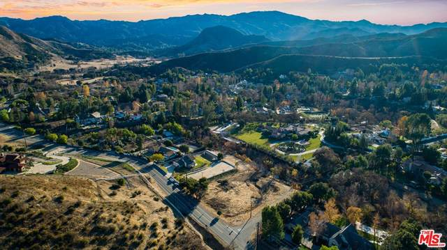 28900 Silver Creek Road, Agoura Hills, CA 91301 (#21789020) :: Necol Realty Group