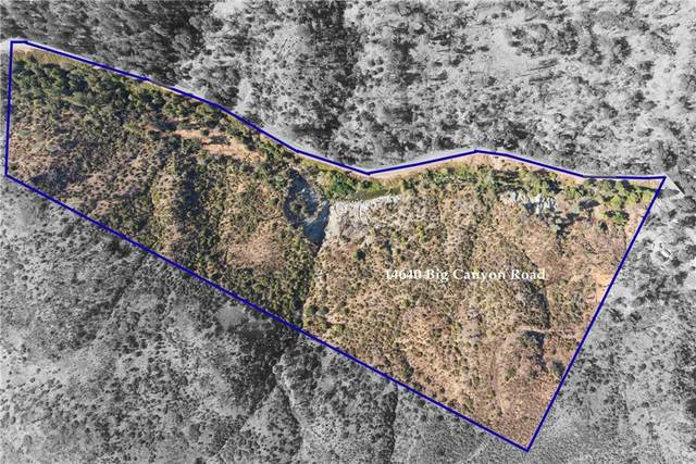 14700 Big Canyon Road, Middletown, CA 95457 (#LC21216180) :: Blake Cory Home Selling Team