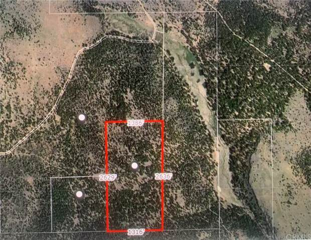 0 Lot On County Rd 133C, Unknown, CA 97635 (#CV21215338) :: Team Tami