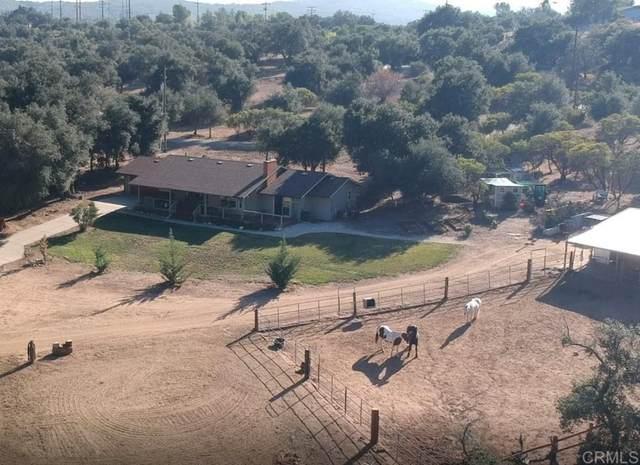 10163 Boulder Creek Road, Descanso, CA 91916 (#PTP2106890) :: RE/MAX Empire Properties