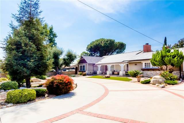 11319 Louise Avenue, Granada Hills, CA 91344 (#SR21217587) :: Necol Realty Group