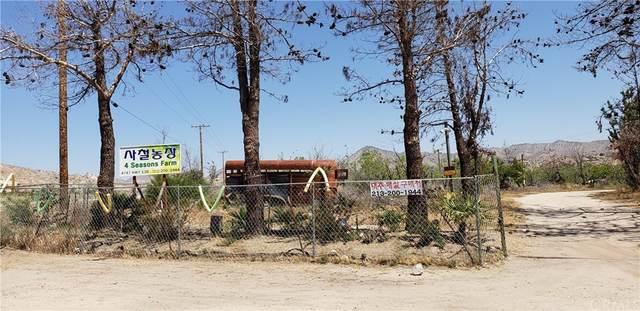 4747 State Highway 138, Phelan, CA 92371 (#TR21218634) :: Necol Realty Group