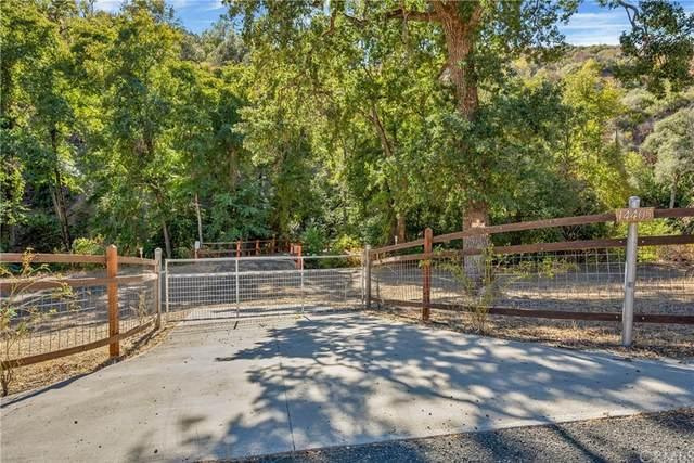14405 Big Canyon Road, Middletown, CA 95461 (#LC21218705) :: Blake Cory Home Selling Team