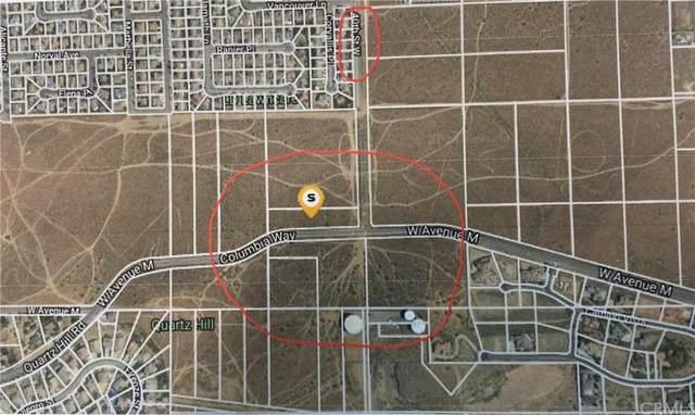 1 W Avenue M, Quartz Hill, CA 93586 (#PW21217652) :: Zutila, Inc.