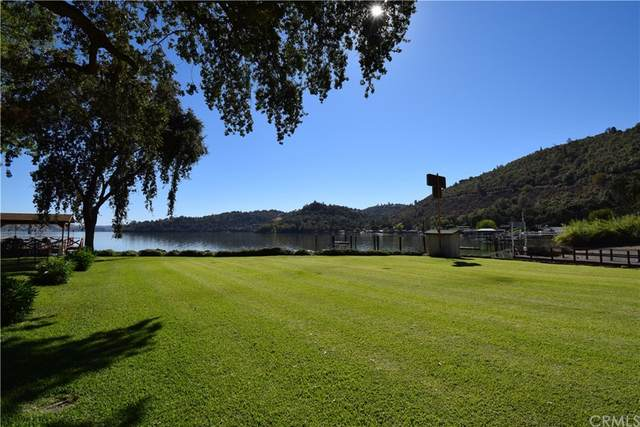 9130 Soda Bay Road, Kelseyville, CA 95451 (#LC21218959) :: Blake Cory Home Selling Team