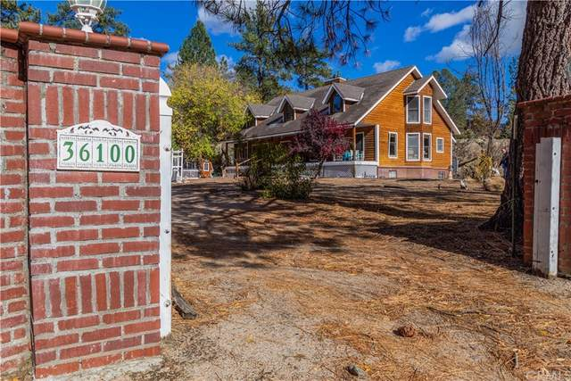 36100 Butterfly Peak Road, Mountain Center, CA 92561 (#SW21215175) :: Team Tami