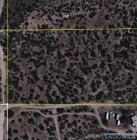 0 NE Lease Road, Ranchita, CA 92066 (#210027910) :: Robyn Icenhower & Associates