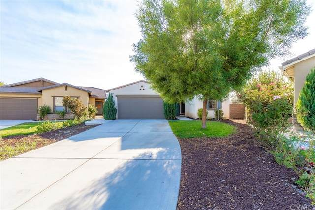 29483 Jersey, Lake Elsinore, CA 92530 (#IG21219782) :: Team Forss Realty Group