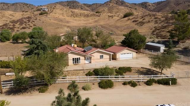 8545 Calva Street, Leona Valley, CA 93551 (#SR21220187) :: Swack Real Estate Group | Keller Williams Realty Central Coast