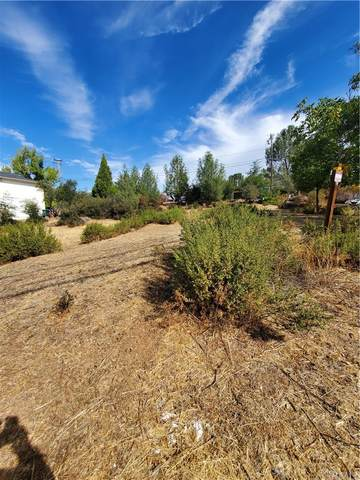 10602 Fairway Drive, Kelseyville, CA 95451 (#LC21221344) :: Zutila, Inc.