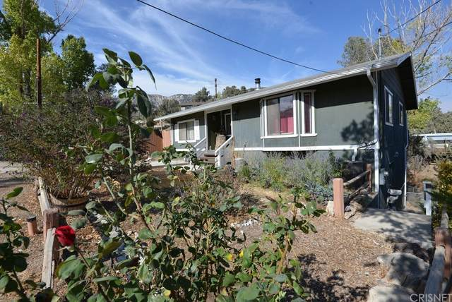 628 Elm, Frazier Park, CA 93225 (#SR21219417) :: Robyn Icenhower & Associates