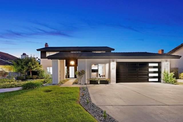 651 Solana Hills Ct, Solana Beach, CA 92075 (#210028130) :: Blake Cory Home Selling Team