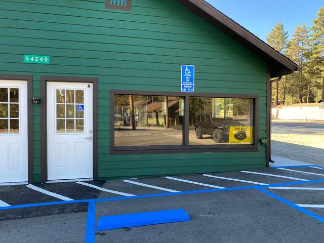54240 Pine Crest Avenue, Idyllwild, CA 92549 (#219068504DA) :: The M&M Team Realty