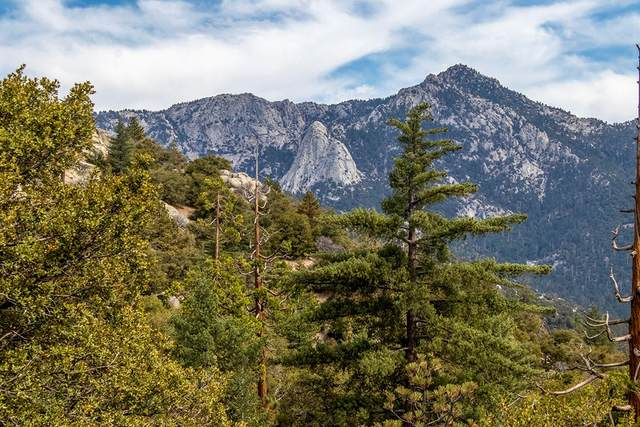 24695 Highgrove, Idyllwild, CA 92549 (#219068591DA) :: American Real Estate List & Sell