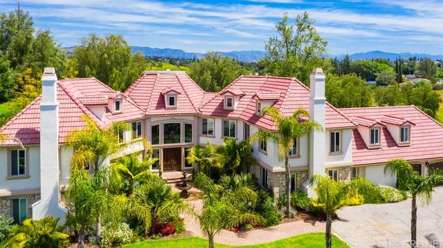 10650 Oakdale Avenue, Chatsworth, CA 91311 (#SR21222694) :: The M&M Team Realty