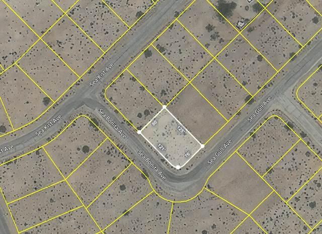 2457 Sea Gulll Avenue, Salton City, CA 92274 (#NDP2111482) :: Z REALTY