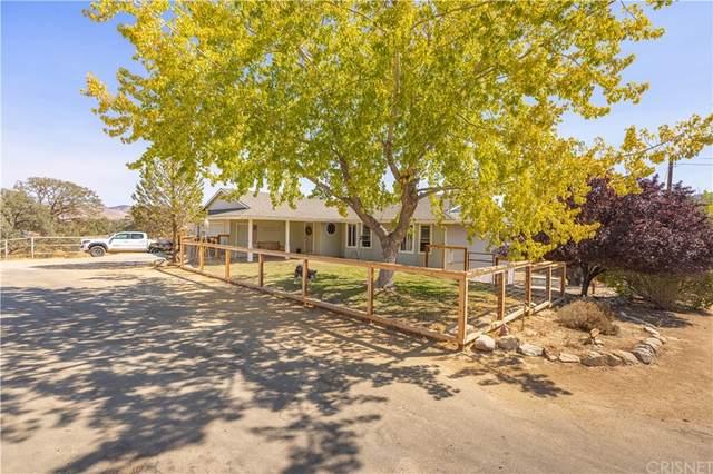 21806 Mariposa Road, Tehachapi, CA 93561 (MLS #SR21222885) :: ERA CARLILE Realty Group