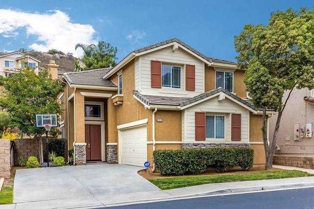 732 Kirkwall Drive, San Marcos, CA 92069 (#PTP2107080) :: Latrice Deluna Homes